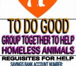 To do good homeless animals